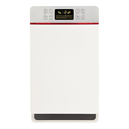 Lionwell Multi-layer Filters Ionic Air Purifier with Humidification function to Well Remove Dust & Allergens K04