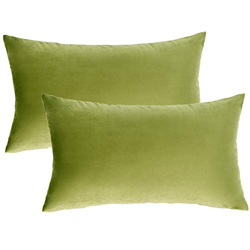 Imbuty 2 Packs Luxurious Soft Velvet Solid Sage Green Decorative Pillow Covers 12 x 20 for Sofa Couch Bed