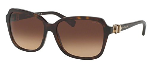Coach Womens Sunglasses (HC8179) Tortoise/Brown Acetate - Non-Polarized - - Sunglasses Coach Brown