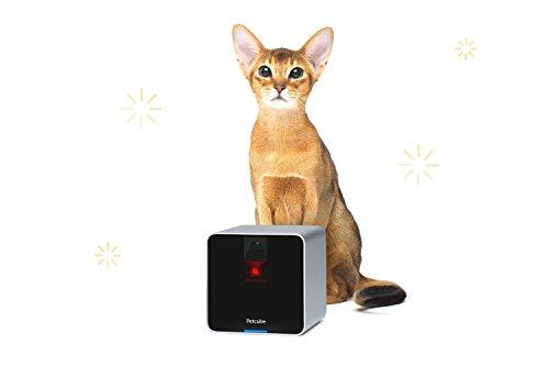 Petcube Camera Pet Monitor