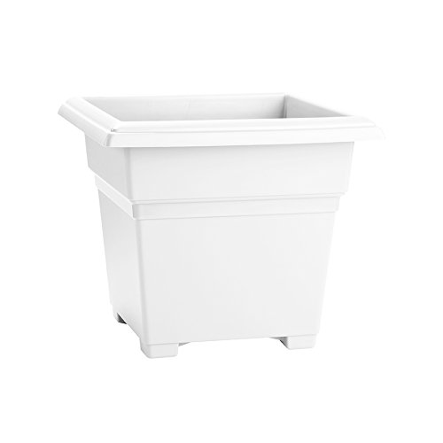 Countryside Square Tub Planter, White, 14-Inch - Square Plant Containers