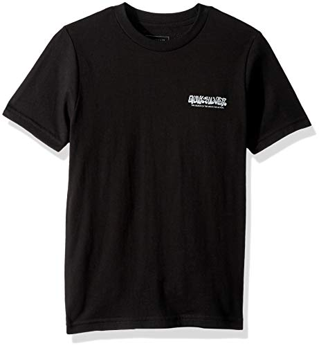 Quiksilver Boys OG Mountain and Wave TEE, Black, L/14