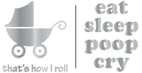 Plaid:Craft Uptown Baby Metallic Foil Iron-Ons, Eat/Sleep/Poop/I Roll, (Baby Iron Ons)