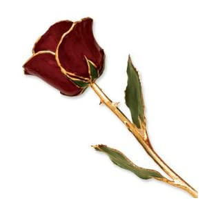 Allmygold Jewelers Burgundy Long Stem Dipped 24K Gold Trim Genuine Rose in GOLD Gift Box 18