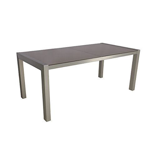 Christopher Knight Home 305661 Borg Outdoor Tempered Glass Dining Table with Aluminum Frame, Silver