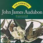 img - for The Essential: John James Audubon (Essential (Harry N. Abrams)) book / textbook / text book