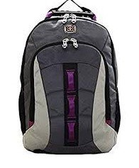 SwissGear Skyscraper Backpack with Laptop Compartment (Magenta)