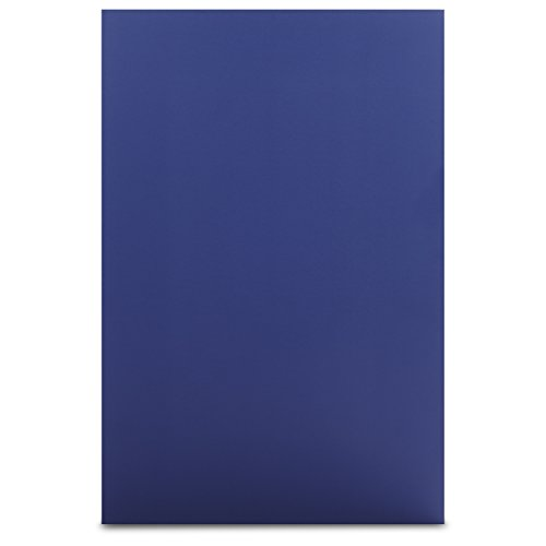 Elmer's Colored Foam Board , 20 x 30, Blue, 10-Pack (950053)