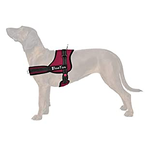 Slowton No Pull Harness, Dog Vest Harness Front Back Leash Connectors Two D Ring Pet Harness Dog Harness Handle… Click on image for further info.