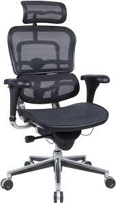 Raynor/Eurotech ErgoHuman ME7ERG Black Mesh Executive Chair w/ Headrest ()