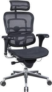 Raynor/Eurotech ErgoHuman ME7ERG Black Mesh Executive Chair w/ Headrest (Eurotech Mesh Ergohuman)