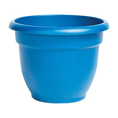 Flowerpot Ariana Sea 10 : Garden & Outdoor