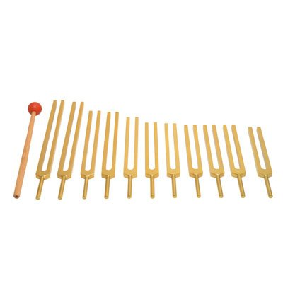 Gold Finish 12 Mineral Tuning Forks Set