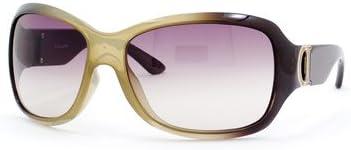 Christian Dior Promenade 2 Tobacco Brown   Brown Gradient Sunglasses 1be05fd6c2