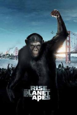 Amazonポスタ A4 パターンc 猿の惑星創世記ジェネシス 光沢