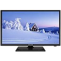 """PRESTIGIOSO MARCHIO GRAETZ 22"""" E220O MONITOR PC 22 TV FULL HD LED 22 POLLICI DVB-T / T2 HDMI - USB - SCART INTERFACCIA PC VGA"""