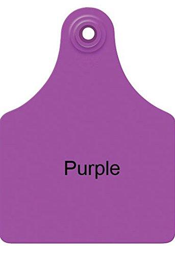 Allflex Global Large Blank Cattle Ear Tags 25 Ct Purple