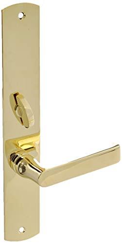 (Baldwin 6940.ENTR Denver Single Cylinder Mortise Handleset Trim Set, Lifetime Polished Brass)