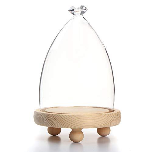 Jars & Boxes - Elegant Glass Display Cloche Bell Jar Dome Flower Immortal Preservation Vase Wooden Base Home Decor - Decoration Ornaments Home Vase Decorations Ornamental
