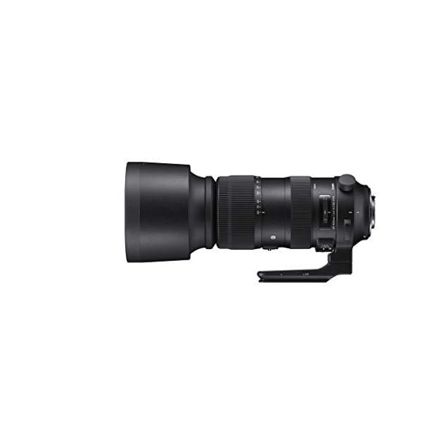 RetinaPix Sigma Sports 60-600mm f/4.5-6.3 DG OS HSM Lens for Nikon DSLR Cameras (Black)