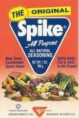Natural Seasoning (Spike Original All Purpose Gourmet Natural Herbal Seasoning, 7)