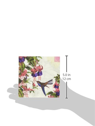 Paperproducts Design 7341 Beverage Cocktail Napkin, 5 by 5-Inch, Honeysuckle Humming Bird and Fuschi Flower