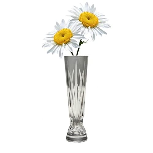 Crystal Tall Vase: Amazon.com on mask with daisies, cat with daisies, house with daisies, ring with daisies, vase of white daisies, plates with daisies, glasses with daisies, christmas with daisies, teapot with daisies, pottery with daisies, flowers with daisies, pitcher with daisies, car with daisies, purse with daisies, butterfly with daisies, jar with daisies, bedroom with daisies, cup with daisies, heart with daisies, wreath with daisies,