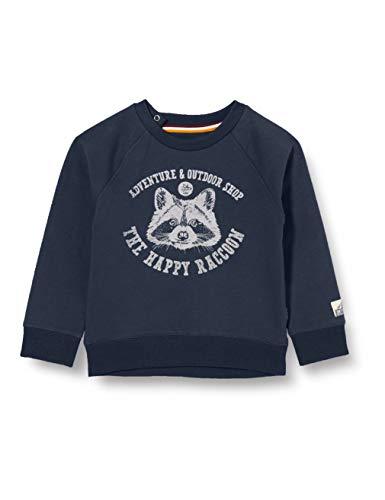 Noppies B Sweater LS Vredendal baby-jongens sweater