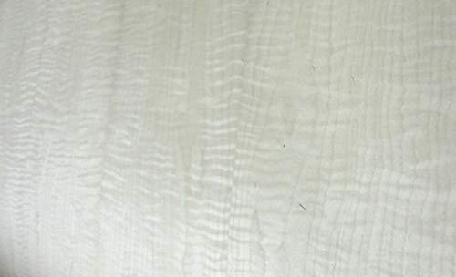 Curly Figured Maple wood veneer 24