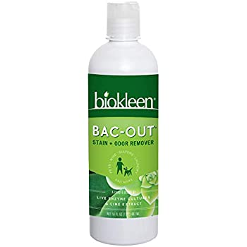 Amazon Com Biokleen Bac Out Stain Odor Remover Destroys