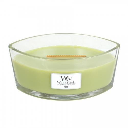 WoodWick 5038581055138 Candle Elipsa Fern 76189E, one Size.