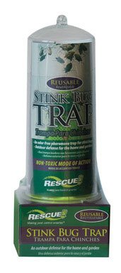 RESCUE Non-Toxic Reusable Stink Bug Trap by RESCUE