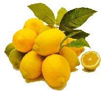Bio Zitronen (1 Stück)
