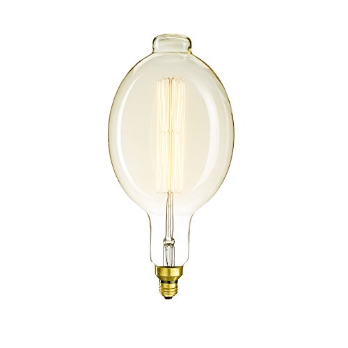 Bulbrite 137201 Dimmable Grand Nostalgic Blown Tube Shaped BT56 Incandescent Light Bulb, 60 Watt, - Bt56 Shape