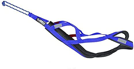 Neewa 8033087538915 - Sled Pro arnés Azul Medium: Amazon.es ...
