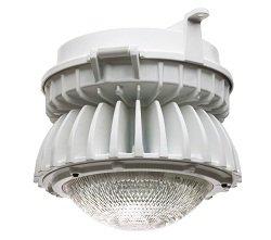 Hazardous Area Location 116 Watt LED Light - Dual Drivers - Class 2 Divisions 1 & 2 (-Wall-347-480 (1 Light Hal Wall Lamp)