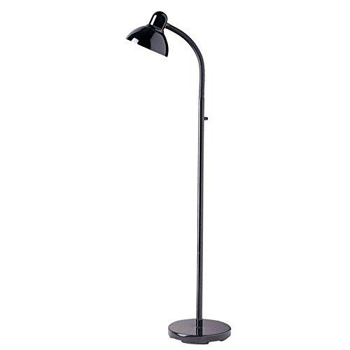 Dainolite Lighting DM238-F-BK Modern 1-Light Floor Lamp, Black by Dainolite