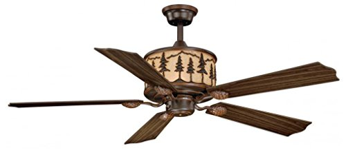 vaxcel lighting ceiling fan - 3