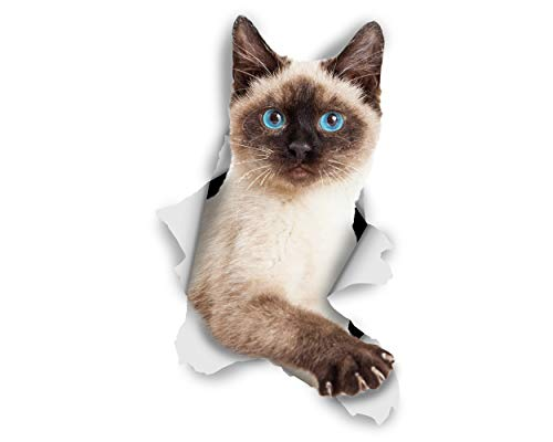 Winston & Bear 3D Cat Stickers - 2 Pack - Breakout Siamese Cat Decals for Wall - Stickers for Bedroom - Fridge - Toilet - Room - Retail Packaged Blue-Eyed Siamese Cat Stickers