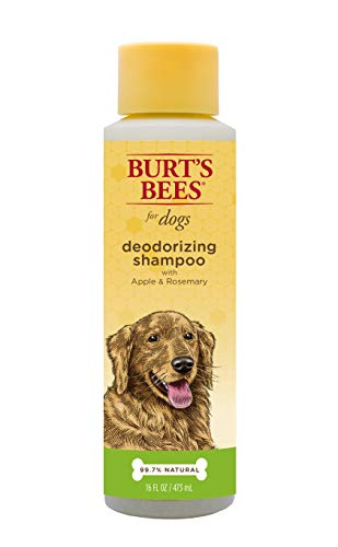 Burt's Bees for Dogs Natural Deodorizing Shampoo with Apple and Rosemary | Puppy and Dog Shampoo, 16 Ounces
