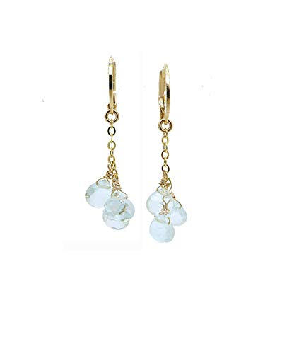 14K Gold Filled Aquamarine Dangle Earrings, March Birthstone Jewelry ()
