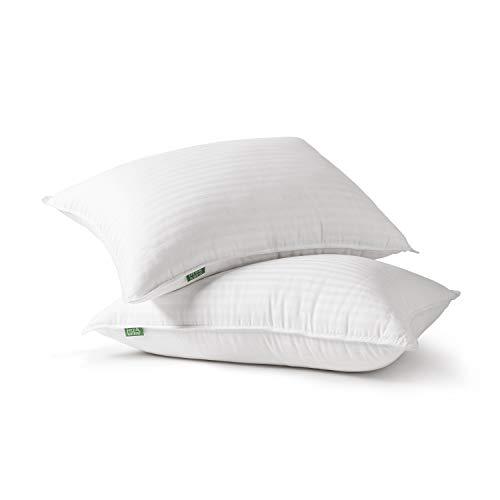 Fern And Willow Premium Loft Down Alternative Pillows For Sleeping 2 Pack Luxury Gel Plush Pillow Queen