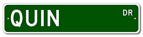 The Lizton Sign Shop Quin Drive Custom Street Sign   Quin Family Last Name Aluminum Novelty Sign   Green   6 X24