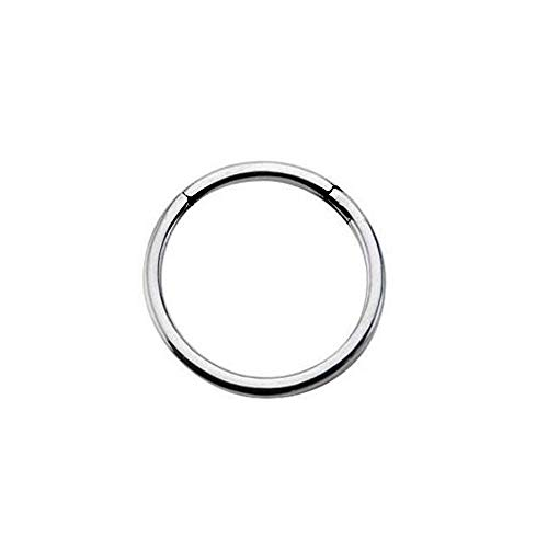 Pierced Owl Seamless Stainless Steel Hinged Segment Clicker Ring (16GA - -