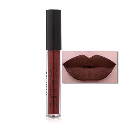 Binmer(TM) FOCALLURE New Fashion Lipstick Cosmetics Women Sexy Lips Matte Lip Gloss Party (C)
