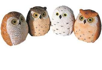 Miniature Owl Figurines Collection 2.25-inch, 4-pc Set