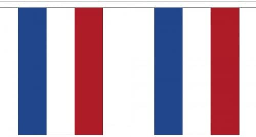 30 Banderines con diseño de bandera de Holanda / Países Bajos (22,8 x 15,2 cm) 100% poliéster, ideal para decorar fiestas, bares, escuelas: Amazon.es: Hogar