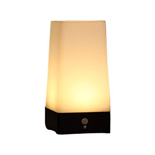 RICHARD BALDWIN LED Night Light Activated Step Lighting Lamps Wireless PIR Motion Sensor Indoor Outdoor Battery-Operated Sensitive Portable Moving Table Lamp for Hallway Room (Size : ()