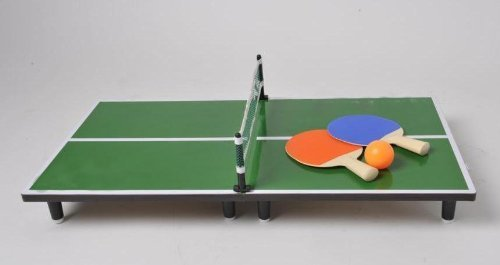 Deluxe Mini Desk Top Table Tennis Table by Table Tennis
