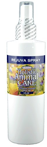 Rejuva Spray 8 oz by Azmira (Over The Counter Hot Spot Treatment For Dogs)